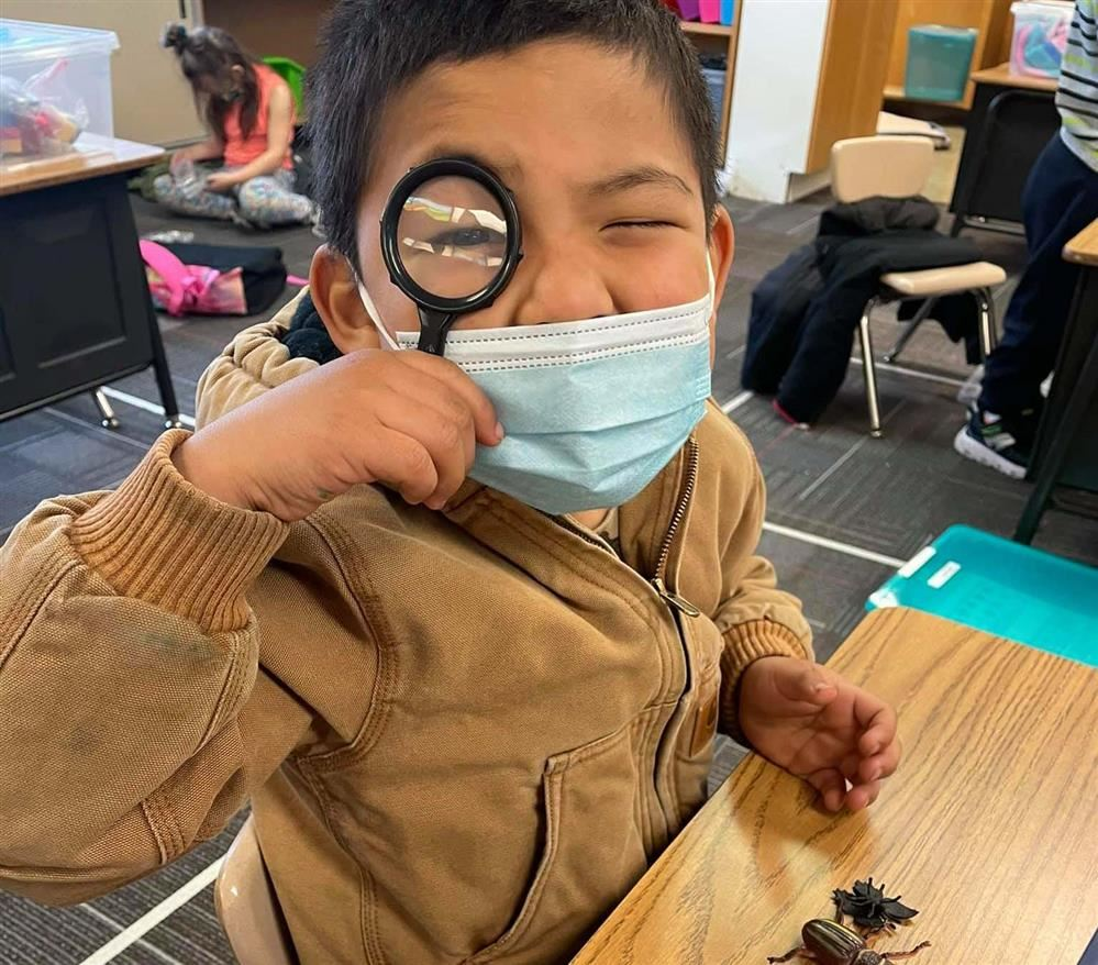 Pacific Beach Elementary student studying insects with magnifying glass.